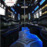 1-20 passenger party-bus